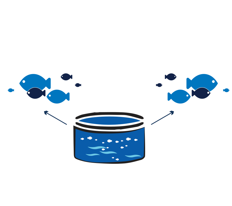 Fish farm software for production control in aquaculture nurseries